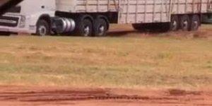 A maior fila de caminhões você vai ver agora, que tanto um atras do outro!