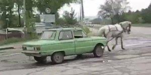 O preço da gasolina faz pessoas colocarem cavalos puxando carros!