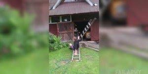 Esse cara achou que estava podendo subir na escada e se deu muito mal!