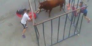 Foi brincar com o touro e se deu mal, quase que acaba em tragédia hein!