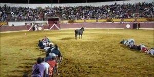 Brincadeira com touro solto na arena, você ri, mas é de se preocupar hahaha!