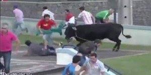 Brincando com touro, mas ele não quer brincadeira não hahaha!