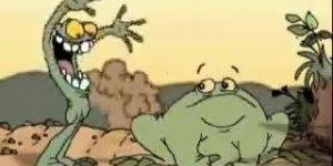 Competição de sapos comendo moscas, para fazer você rir até 2030 kkk!