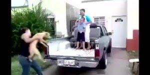 Esse menino sabe fazer o paranauê antes de cair do carro kkk!
