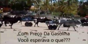 Preço da gasolina no Brasil faz acontecer algo inusitado com Velozes e Furiosos!