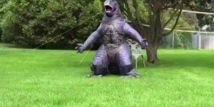 Quem foi que disse que os dinossauros estão extintos? Eles agora fazem humor!