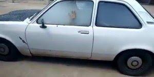Tem um dinossauro na coleira... kkk veja a brisa desse cara dentro do carro!