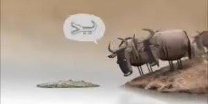 Uma animação muito engraçada que nos faz rir e ao mesmo tempo pensar!