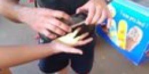 Pegadinha da barata na mão, é muita maldade do ser humano kkk!