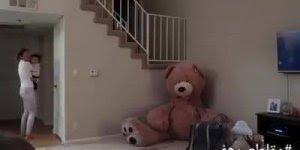 Pegadinha do urso de pelúcia se mexendo, o que você faria no lugar dessa mulher?