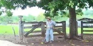 Piada do homem que vai pedir para dar uma namorada na muié do cumpadi!