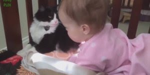 Animais de estimação e seus pequenos donos, momento fofura do dia!!!