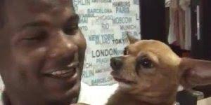 Cachorrinho fica bravo de falar que ele vai ser castrado hahaha!