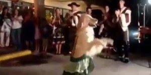 Cachorro dando show, olha a carinha dele dançando, é demais!!!