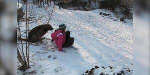 Cachorros conhecendo a neve pela primeira vez, olha alegria deles!!!