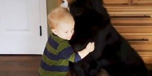 Cachorros e crianças em seus momentos mais fofos juntos, confira!
