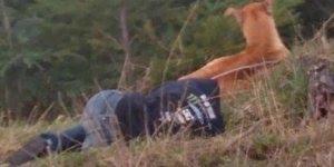 Mulher passa duas horas deitada para salvar cachorro, simplesmente fantástico!!!
