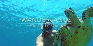 Nadando no fundo do mar acompanhado de uma tartaruga, simplesmente incrível!!!