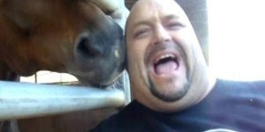 Quem disse que cavalo não sabe dançar, responder perguntas e muito mais!