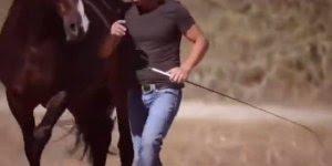 Treinamento de um cavalo, quem foi que disse que eles não aprende?