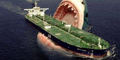 Vídeo com fotos dos maiores animais do mundo, vale a pena conferir!!!
