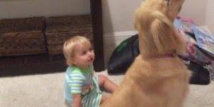 As cenas mais fofas de bebês e seus cachorros de estimação!