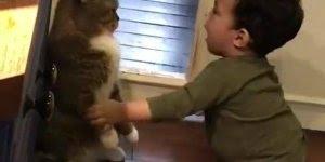 Bebê brincando com gato, parece que o gato não esta gostando...