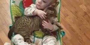 Bebê com gato em momento fofo, compartilhe em seu Facebook!