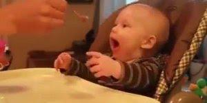 Bebê com muito apetite, dá até gosto de alimentar um bebê assim!
