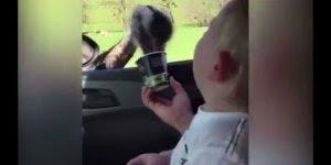 Bebê dando risada de avestruz comendo em seu copo, que delicia de risada hahaha!