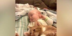 Bebê dormindo e fazendo carinho em seu Gato, que dupla mais fofa!