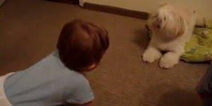 Bebê e cachorro, não tem como amar essa dupla, veja quanta fofura!