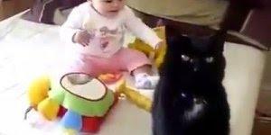 Bebê e gato - A relação entre eles é uma das mais linda e pura!