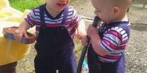 Bebês gêmeos se divertindo muito com uma coisa bem simples da vida!