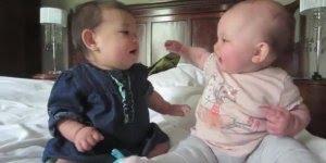 Bebês se conhecendo, o vídeo mais fofinho que você vai ver hoje!!!