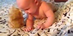 Bichinho de pelúcia que serve como estímulo para o bebê começar a falar!