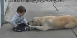 Cachorro e criança, a relação mais linda que existe no mundo!