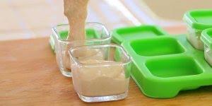 Como Congelar as Papinhas de bebês? Freezer é mesma coisa que congelador?