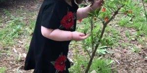 Criança adorando a natureza, veja como ela cheira as flores!