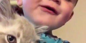 Criança brincando com gato de miar, muito fofo, confira!!!