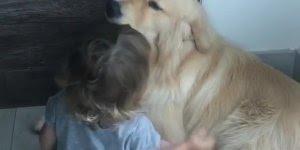 Criança dando carinho para seu cachorro, que amizade mais linda!