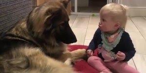 Criança demonstrando amor e carinho por seu cachorro, que lindo!