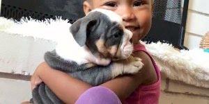 Criança e cachorro - Uma amizade sincera e linda, confira!