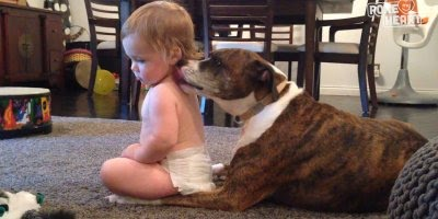 Crianças e animais, uma dupla adorável e muito fofa de ver!