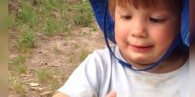 Crianças sendo surpreendidas por animais e levando sustos!
