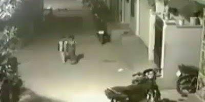 Duas crianças são atacadas por cães, uma sai correndo e a outra...