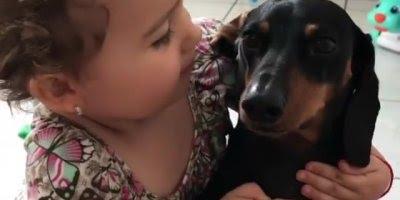 Menina dando carinho ao seu cachorro, ensine seus filhos a amarem os animais!