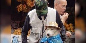 Homem cuidando de cachorro com muito carinho, uma atitude muito legal!