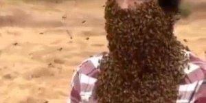 Homem tem rosto e pescoço coberto com abelhas, alguém ai teria coragem?