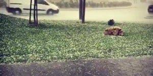 Tempestade de Granizo na Espanha, a natureza e suas supresas!